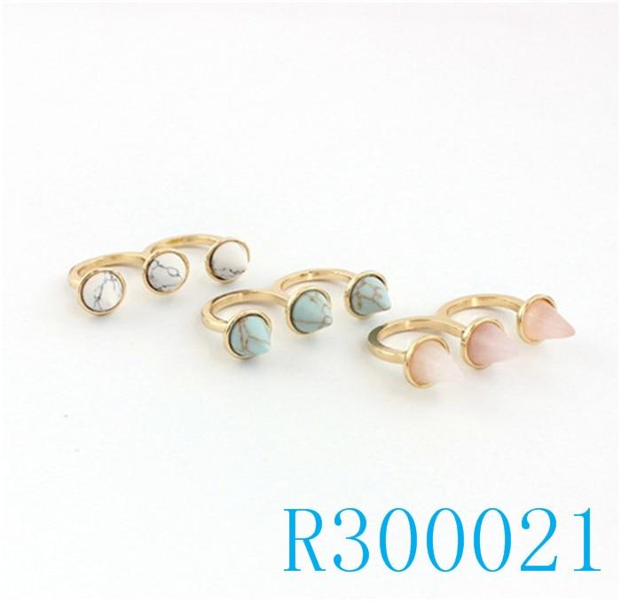 R300021
