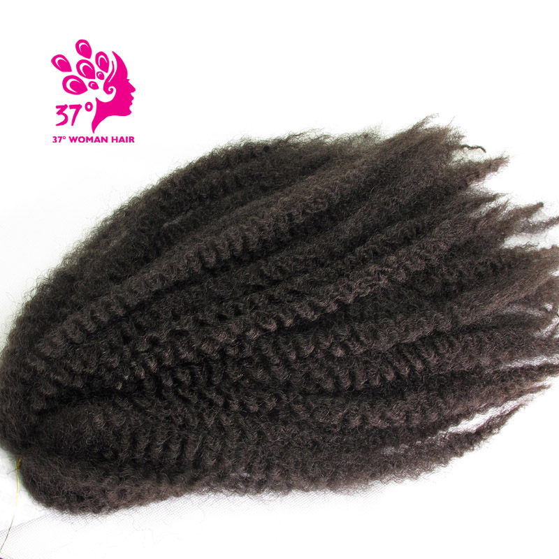 afro twist braidcolor 4 (4)