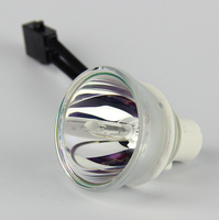 샤프 PG-F261X/shp119 180day 보증을위한 새로운 오리지널 프로젝터 베어 램프 전구