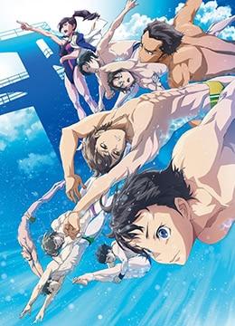 《跳水男孩》2017年日本剧情,动画动漫在线观看