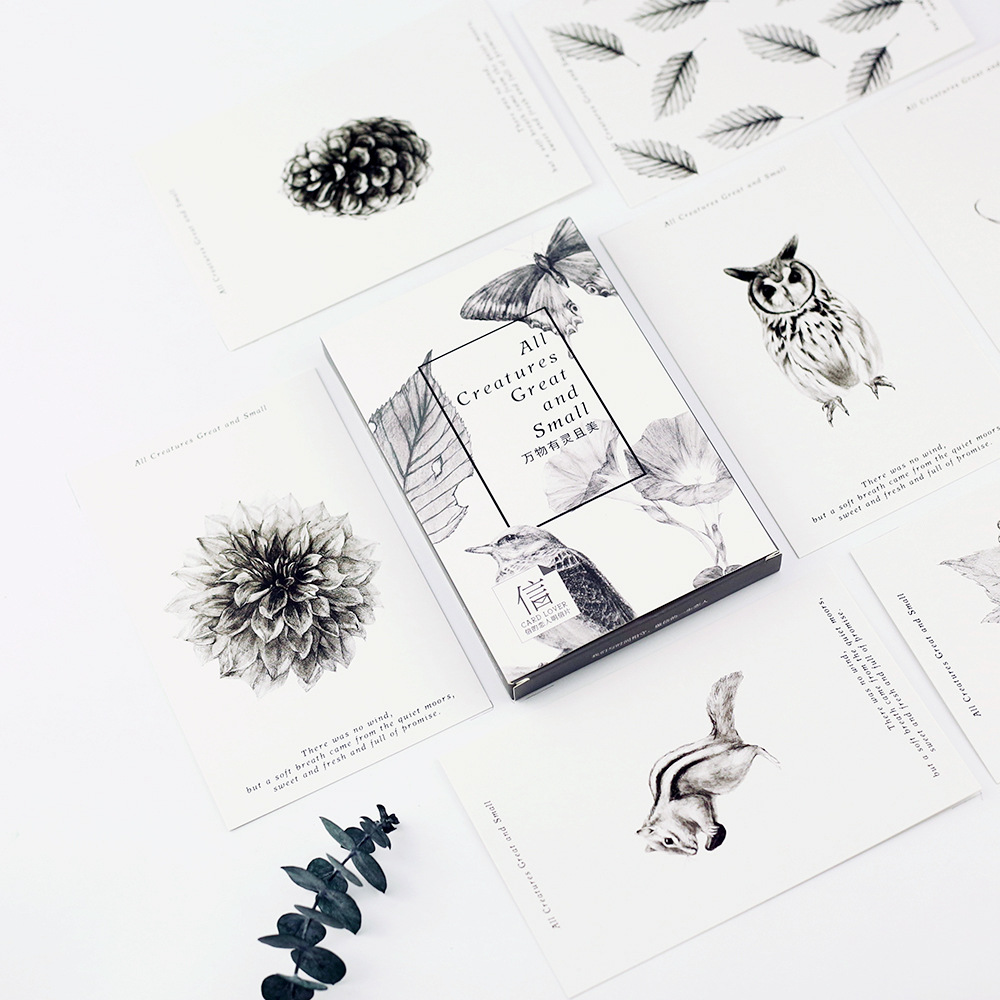 Pcs lot cute black and white nature greeting cards