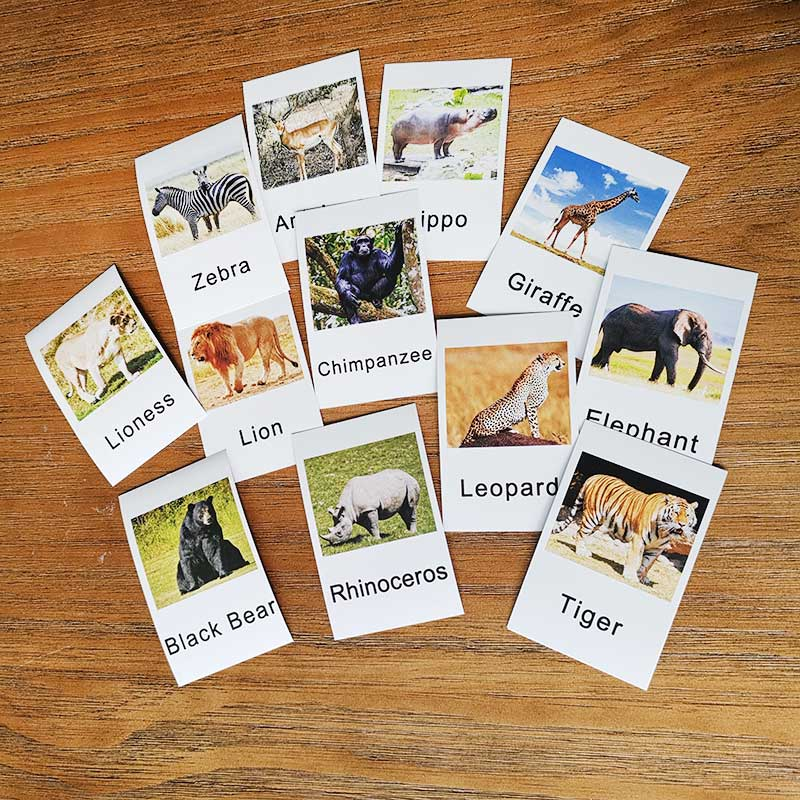 12pcs Montessori Cards Animal Learning Flash Card Educational Toys For Children Language Learning For Toddlers