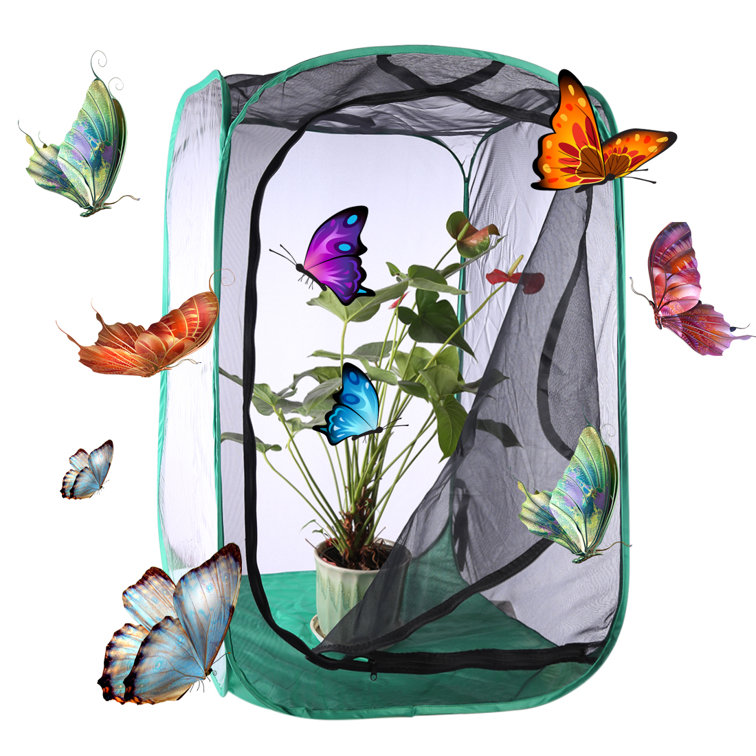 Outdoor Neture Playing Sport Butterfly and Insect Habitat Cage Mesh Terrarium Pop-up  Toys for Kids - Size LOutdoor Neture Playing Sport Butterfly and Insect Habitat Cage Mesh Terrarium Pop-up  Toys for Kids - Size L
