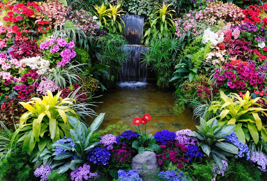 Laeacco Flowers Gardening Waterfall Scenic Photography ...