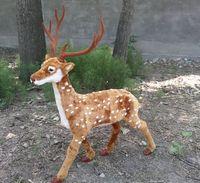 Simuluationニホンジカ鹿モデル大85 × 100センチ