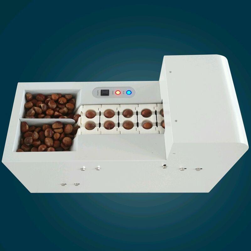 Professional Electric Chestnut Shell Opening Machine Hazelnut Slitting Machine Opener,double Chain Link Chestnut Cutting Machine