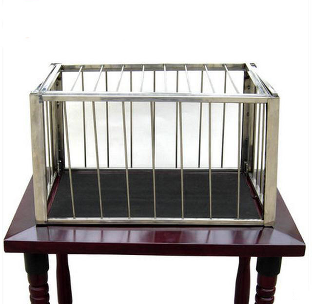 Transparent Cage To Dove  - Stage Magic  / Magic Trick, Gimmick, Props