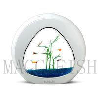 Colorful Mini Ecology Fish Tank Integration Filter Mini Nano Tank Office Coffee Table Aquarium 4 L 6 L Home Decorations