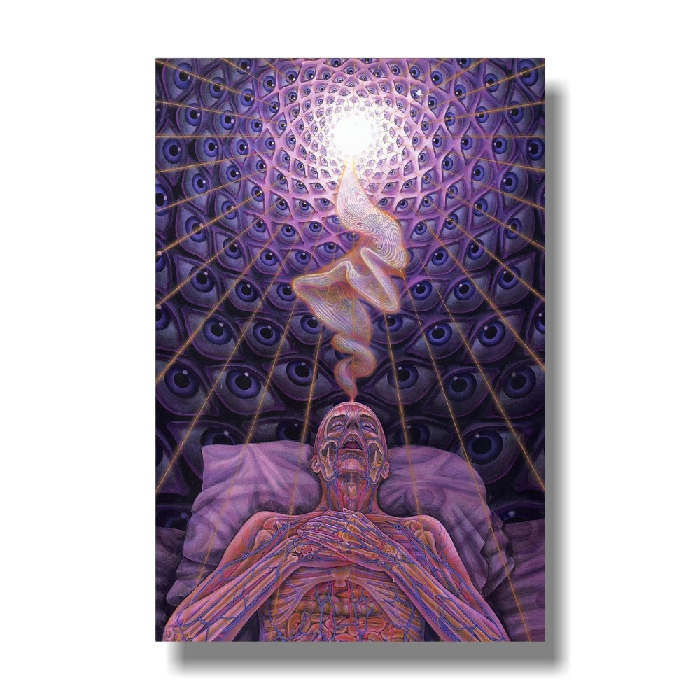 Trippy Alex Grey Abstract Silk Art Print Poster  32x48 Inch