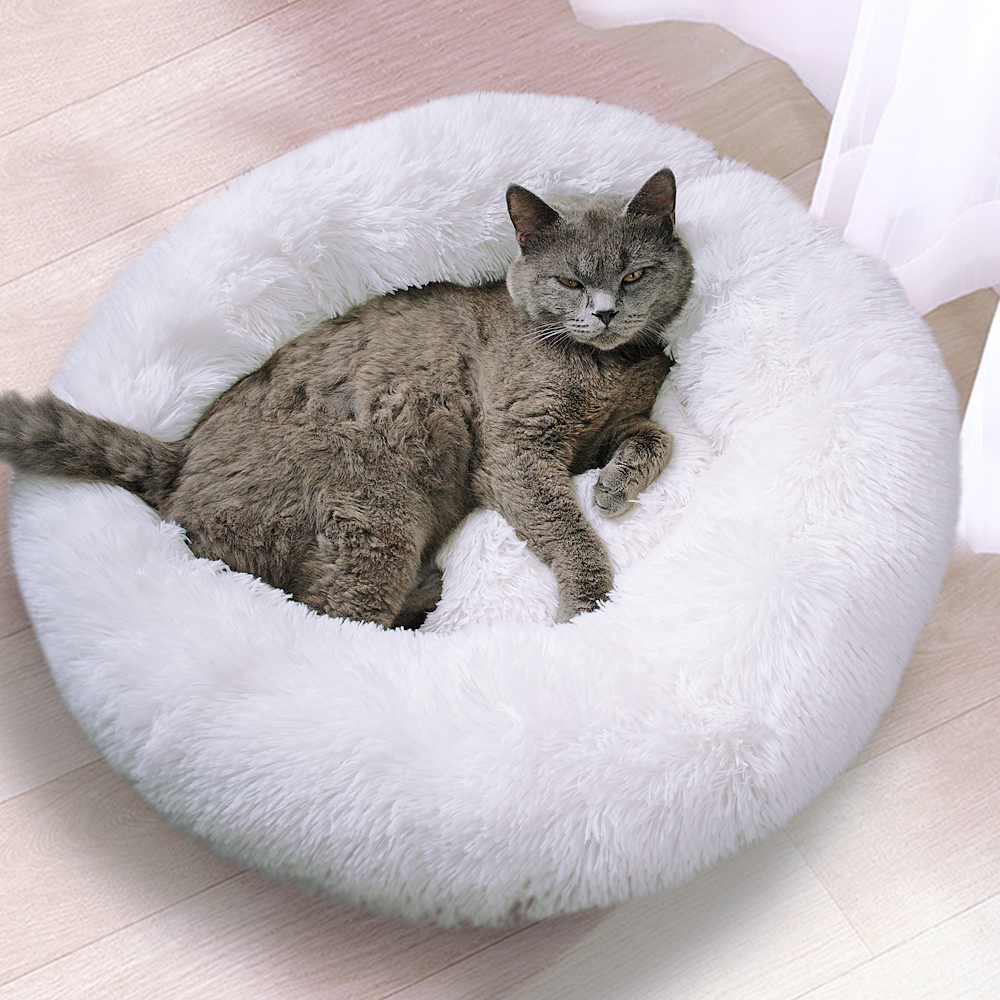 Cat Pet Bed - 1 Royal Living