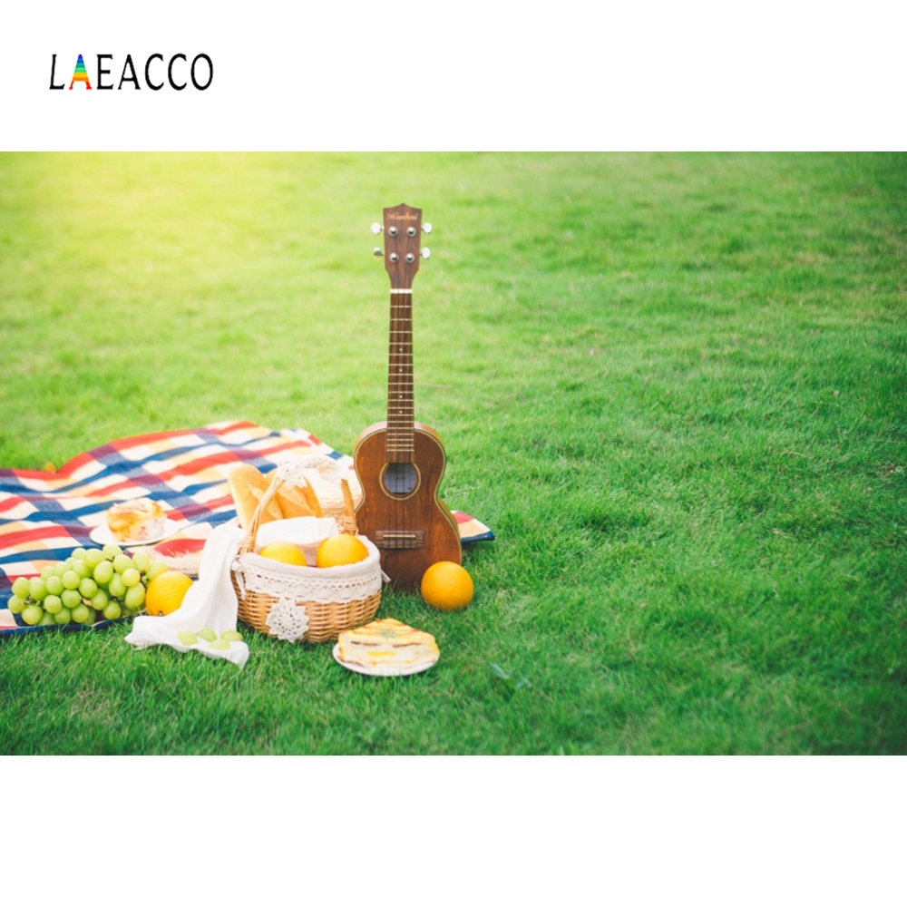 Laeacco Music Guitar Picnic Green Grass Backdrops Customized Photography Background Photographic Backdrops For Photo Studio in Background from Consumer Electronics