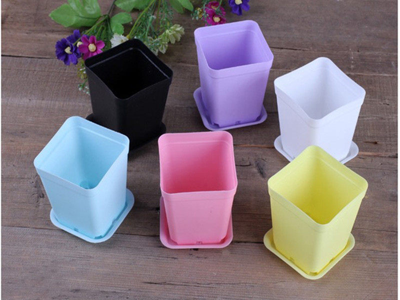 10pcslot cheap mini plastic flower pot bonsai planter pots home 10pcslot cheap mini plastic flower pot bonsai planter pots home garden pot supplies with 3 bags of seeds as gift in flower pots planters from home workwithnaturefo