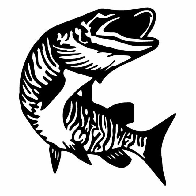 Fish Stickers Tiger Musky Fishing Decals Set of 2 Vinyl Adhesive Decals AFP-0089