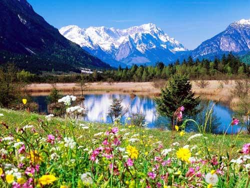 무료 배송 패션 패브릭 장식 사진, 아름다운 산 풍경 도매 벽 매달려, 고블린 태피스트리