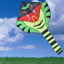 Outdoor Fun Sports Kite Big Green Snake Shape Characters Beach Kites Kitesurf Kitesurfing Pipas Voadores Children's Kids Toys