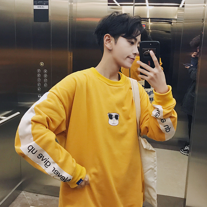 New Trend 2018 Spring Fashion Striped Printing Cartoon Animal Letter Round Neck Casual Sweatshirts Men Cotton Hoodies Schoolboy