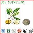 100% natural Garcinia Cambogia extract 90% manufacturer