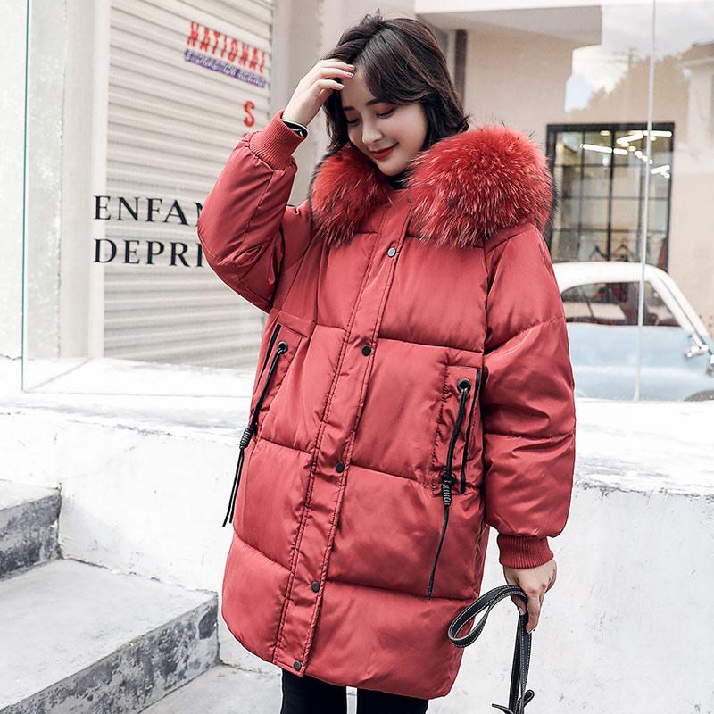 Brieuces Winter Warm Long Jacket 2018 Coat Women Fake Fur Collar Woman Parka Outerwear Down