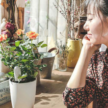 (International Version ) Xiaomi Flora Monitor Digital Plants Grass Flowers Soil Water Light Smart Tester Sensor App Control