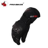 PRO BIKER Moto Gloves Outdoor Sports Warm Windproof Motorcycle Gloves Non Slip Motorbike Gloves Black Blue