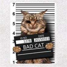 Fashion Cute Patch DIY Clothes 247mm BAD CAT 3d stickers Thermal Transfer Printing Iron on patches for clothing T shirt Women fashion patch diy clothes super cat 3d stickers thermal transfer printing iron on patches for clothing t shirt free shipping