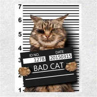 Fashion Cute Patch DIY Clothes 247mm BAD CAT 3d stickers Thermal Transfer Printing Iron on patches for clothing T shirt Women