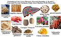 Formula to Cure Liver Diseases, Prevent Hepatitis A, B and C, Cure and Prevent Cirrhosis, Fatty Liver Disease, FLD, 50 pcs/lot