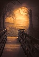 사진 배경 비닐 나무 통로 디지털 인쇄 할로윈 사진 테마 배경 천으로 밝은 달빛