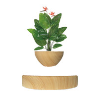 Potted Plant Ornaments Creative Magnetic Levitation Air Bonsai Art Wood Grain With EU Plug Geomancy Office Table Home Decor