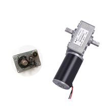 Two-axis worm geared motor 12V24V/DC low speed motor/4058GW DC gear