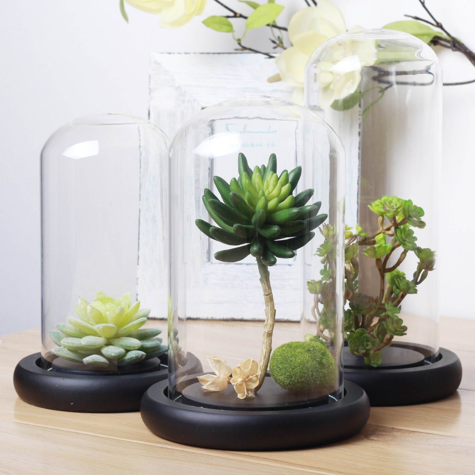 H Amp J Made Bell Jar Glass Cover Without Knob Home Decoration