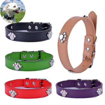 Fashion Collars Personalized Accessoriess 1