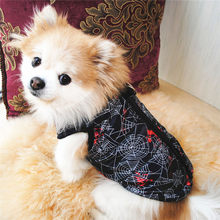 2019 Fashion Dog clothes chihuahua girl and boy Cute Cat Pet Puppy Coat Jacket Pet Supplies Winter Apparel Puppy Costume(China)