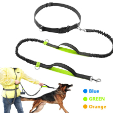 Retractable Hands Free Dog Leash For Running Dual Handle Bungee Reflective Up To 150 Lbs Large Dogs Bag Dispenser