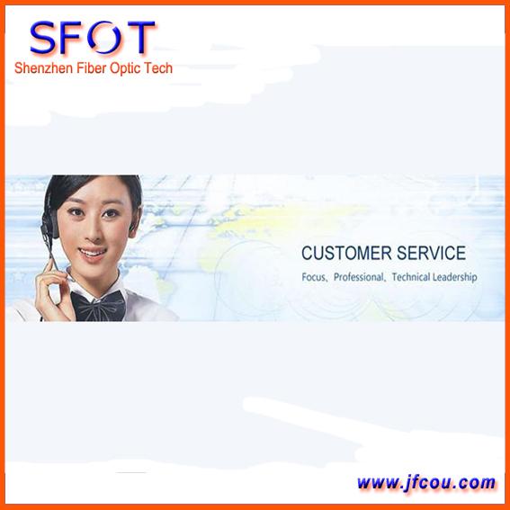 Servicio de Encargo profesional (servicio Técnico)