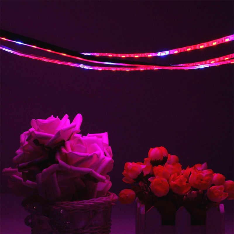 LED Phyto pasek świecący światła SMD 5050 5 metrów pełne spektrum rosną światła DC 12 V Fitolampy żarówki dla roślin nasiona kwiat oświetlenie
