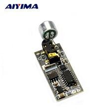 Aiyima Transmetteur FM Module 76-108 MHZ Mini Bug Écoute Dictagraph Intercepteur sensibilité