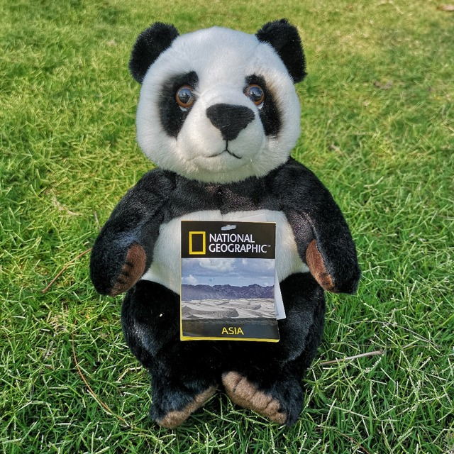 National Geographic Cute cartoon Panda stuffed plush  baby toys lovely doll gift for children