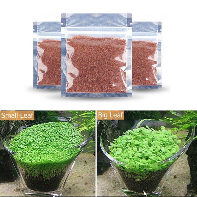 New Plant Grass Aquarium Fish Tank Plants Prospects Waterweed grass Seeding Landscaping Plant Decoration