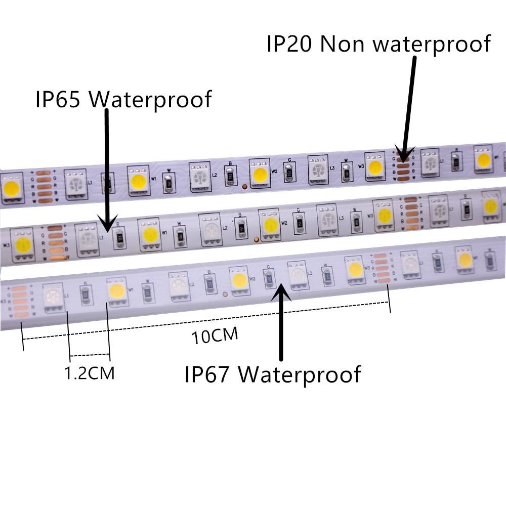 SMD 5050 RGB LED Strip Waterproof 5M 300LED DC 12V 24V CCT RGBCCT RGBW RGBWW WHITE SMD 5050 RGB LED Strip Waterproof 5M 300LED DC 12V 24V CCT RGBCCT  RGBW RGBWW WHITE WARM WHITE Fita LED Light Strips Flexible