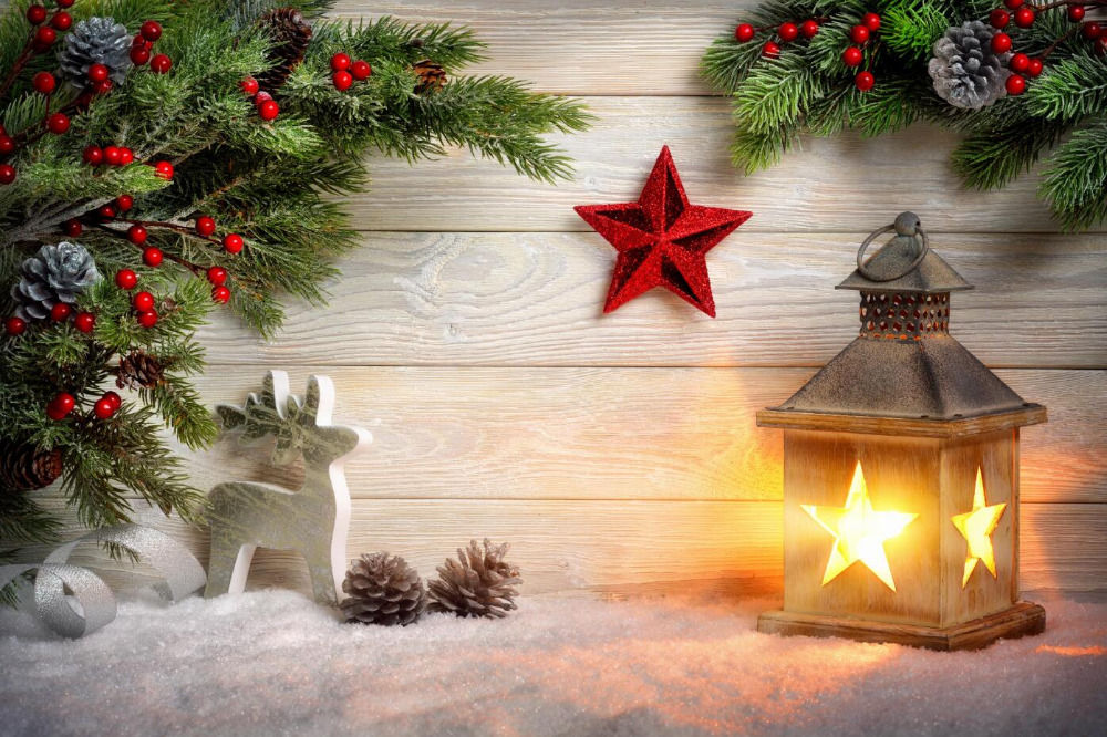 SHANNY Vinyl Custom Christmas theme Photography Backdrops Prop Photo Studio Background YHSHD-09 брюки baon baon ba007ewayls3