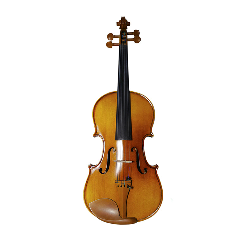 With Case Bow Strings Full Set Jujube Wood Accessories Students Maple 1/8 1/2 1/4 3/4 4/4 Violin Stringed Musical Instrument