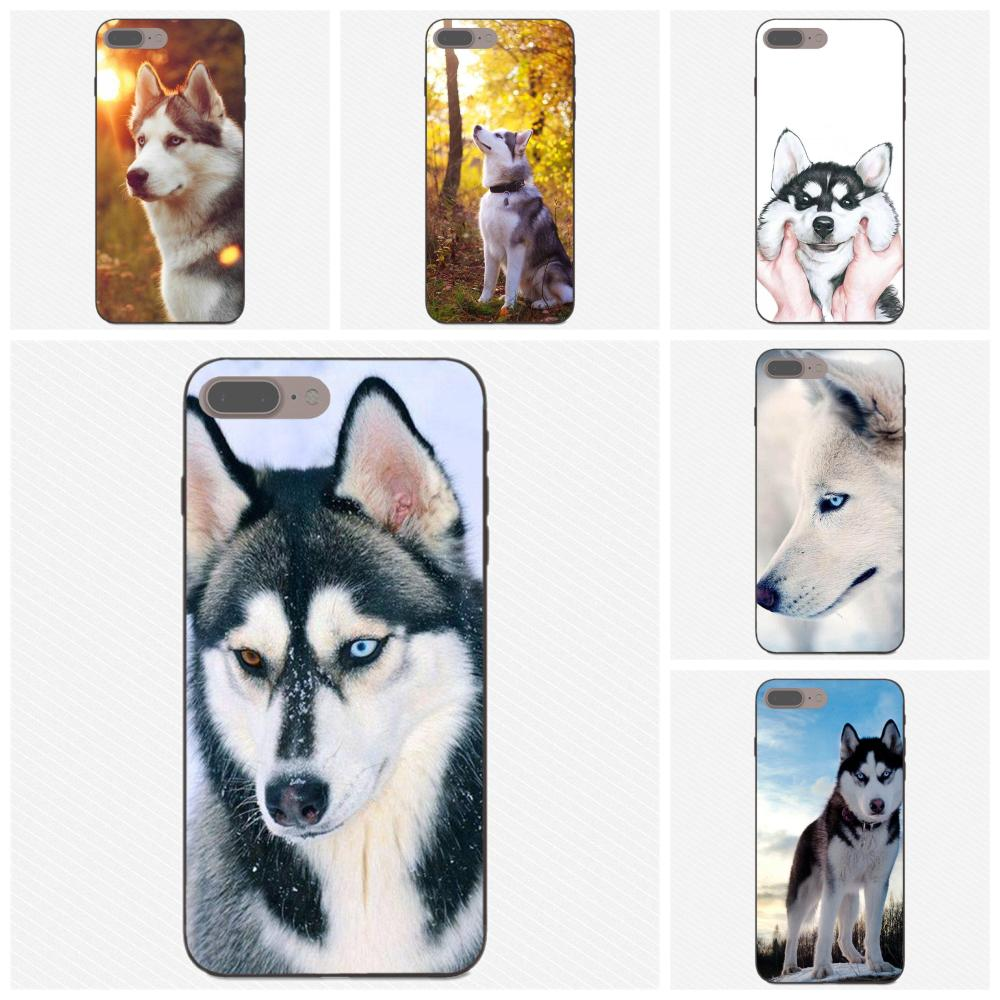 <font><b>Sexy</b></font> Siberian Husky Lovely Dog Pattern For Huawei <font><b>Honor</b></font> 5A 6A 6C 7A 7C 7X 8A 8C 8X <font><b>9</b></font> 10 P8 P9 P10 P20 P30 Mini <font><b>Lite</b></font> Plus image