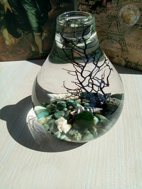 Baisse Orb Terrarium Aquarium kit Naturel Turquoise Brut Cailloux ...