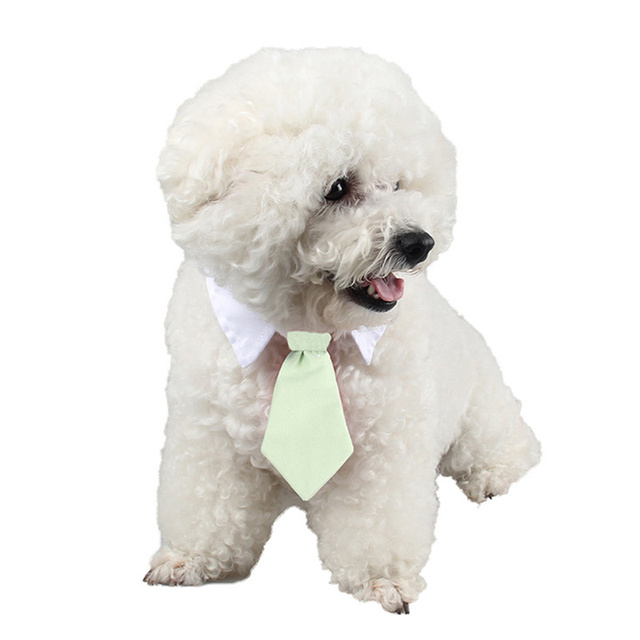 brixini.com - Pet Ties