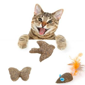 Pet Cat Catnip Toys Fake Mice Clean the Mouth Add Vitamins Mint Ball Clean the Mouth Cat Toys 1