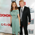 Melania Trump Sage Evening  Dress Off Shoulder Ruffle Tea Length  Formal Dress