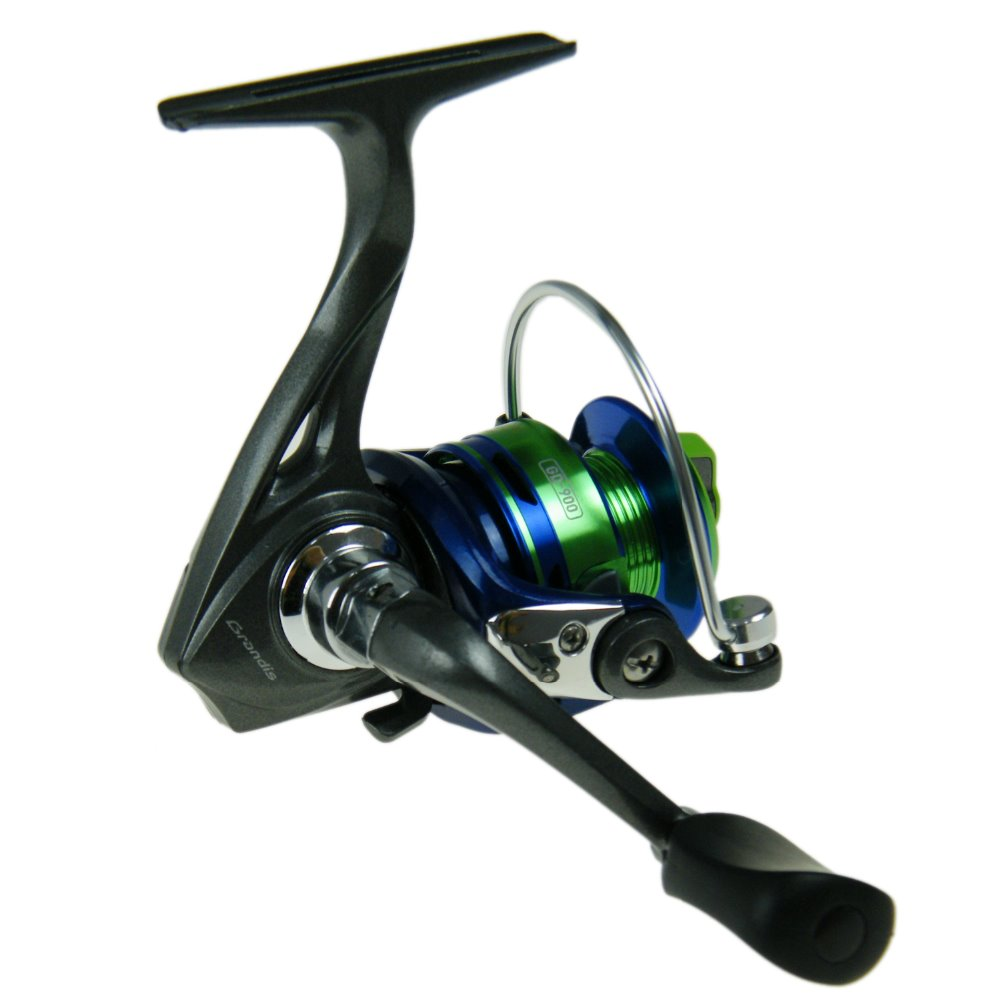 Left right spinning reel grandis yolo gd900 5bb anodized for Mini fishing reel