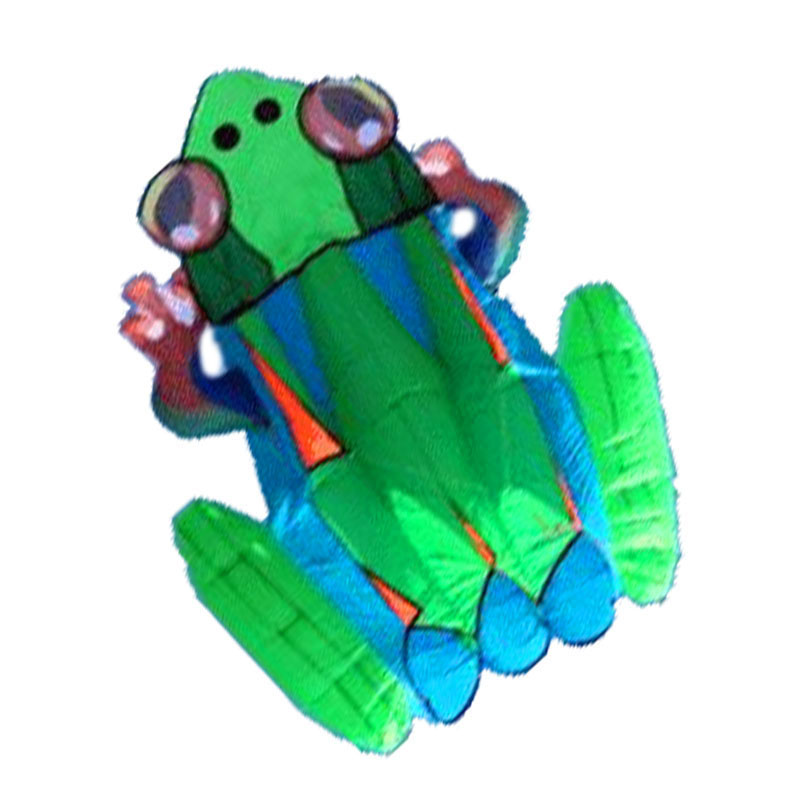 NEW ARRIVE 3D HIGH QUALITY3 SQUARE NYLON CLOTHE POWER WINDSOCKS / INFLATABLE FROGS SOFTWARE KITES FOR KITE FESTIVAL image