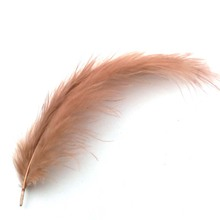 2Pack/Bag 40pcs/pack Fishing Lure Dyed Marabou feather cheap Woolly Bugger Fly Fishing Tying materials quilling feather